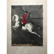 Stampe equestri